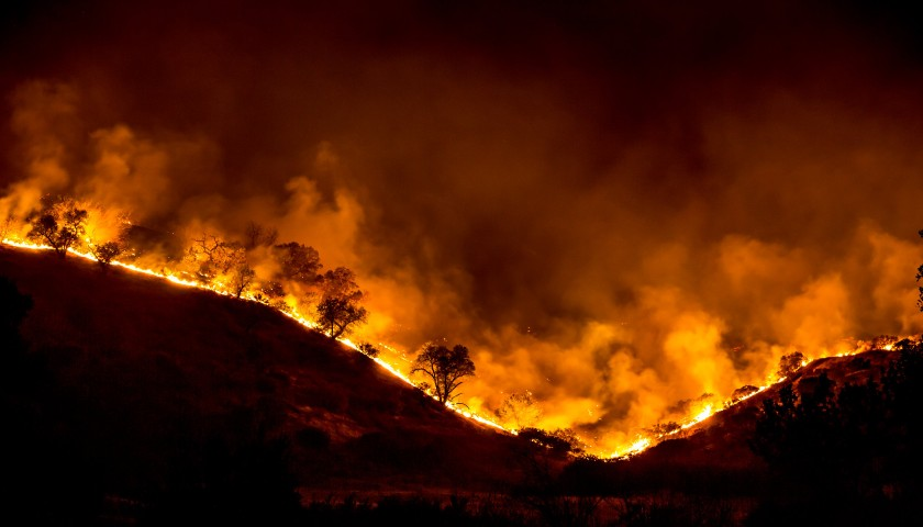 California Professor Who Started Wildfires and Tried to Trap Firefighters Predicted Trump Would 'Get Violent' If He Lost 2020 Election