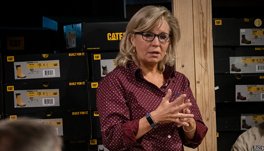 Commentary: The Liz Cheney Meltdown, and What It Means