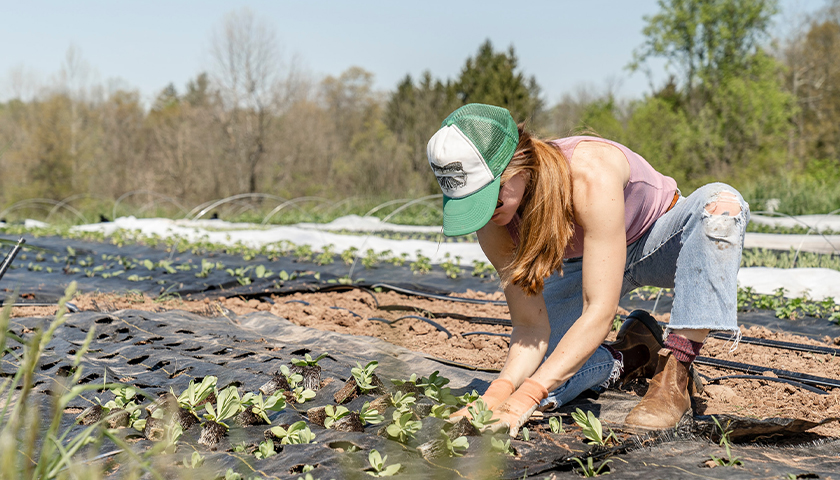 Farmers Cry Foul over Biden's Death Tax Proposal