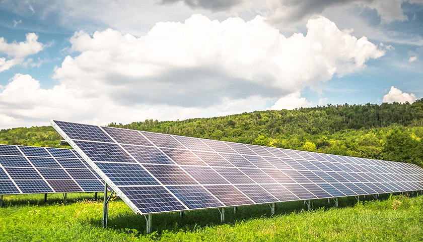 Biden Claims Half of American Energy Could Be Solar by 2050